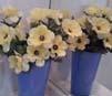 w-flower.jpg
